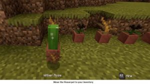 move the flower pot to your inventory