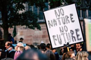 Climate change affecting nature