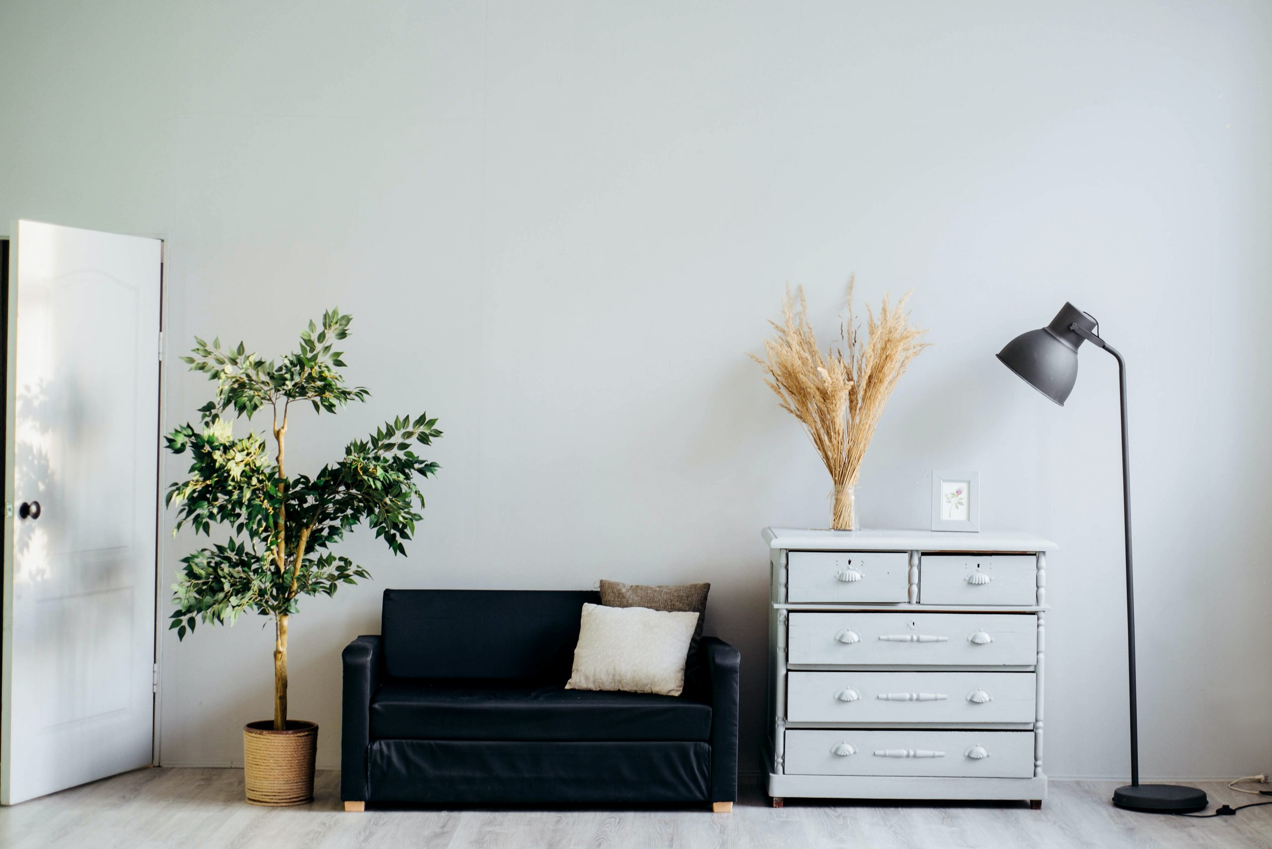 5 Health Benefits You Can Get By Having Plants In Your House