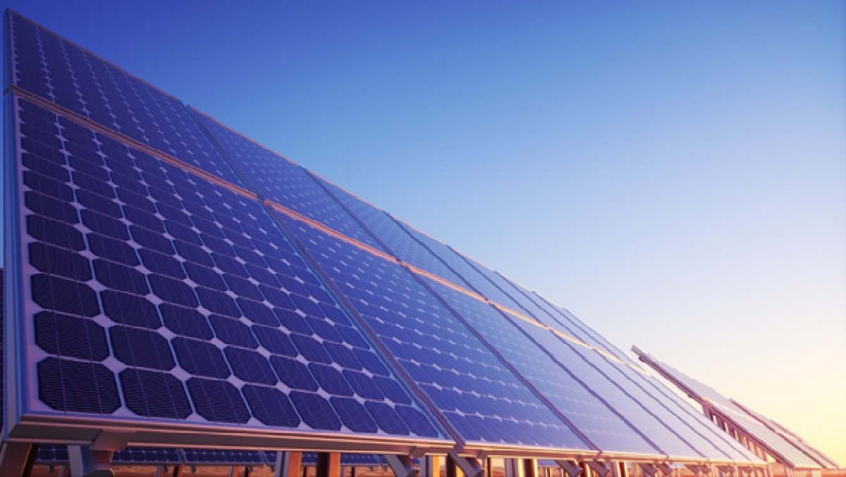 Solar Energy Business Guide: Should Your Business Switch to Solar?