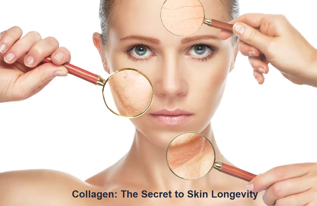 Collagen: The Secret to Skin Longevity