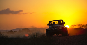 Vehicles For Handling Off-road Trips
