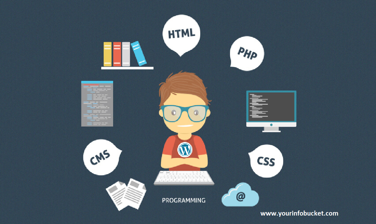How To Become a WordPress Developer?
