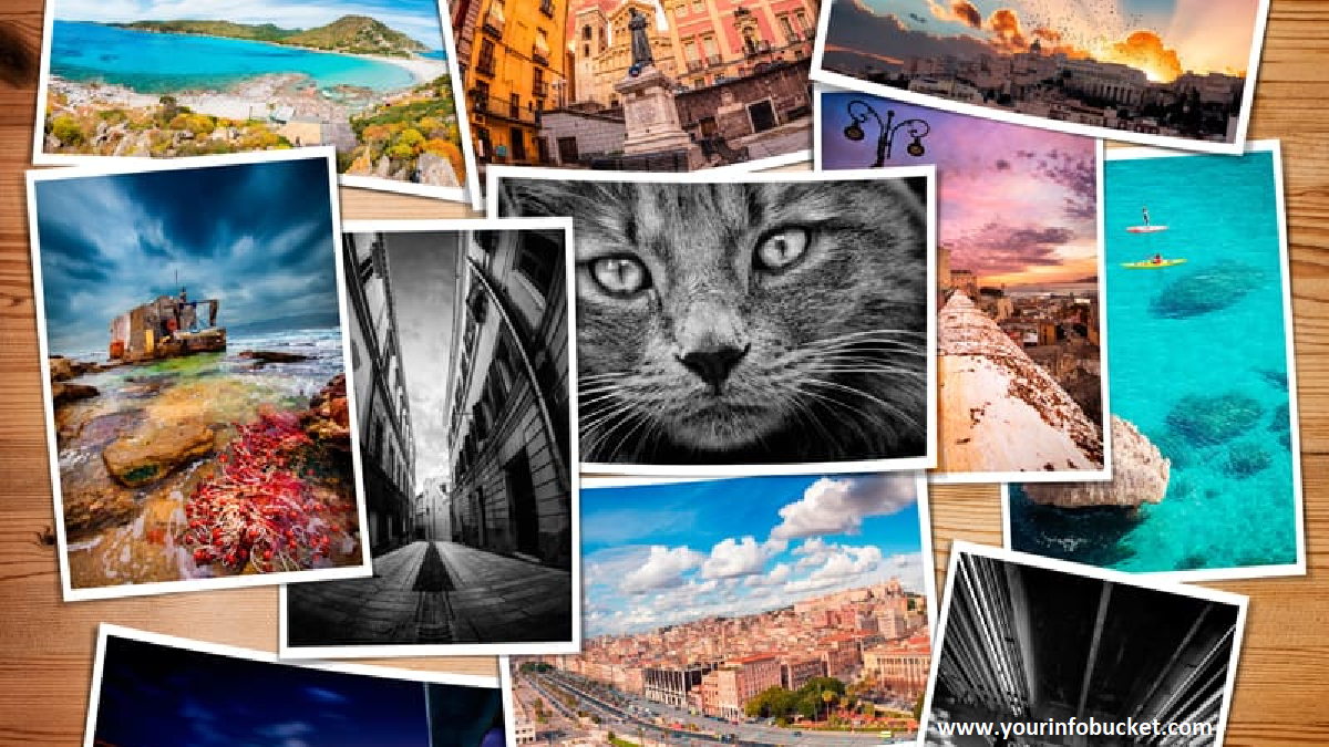 What are Top 6 Flickr Alternatives?
